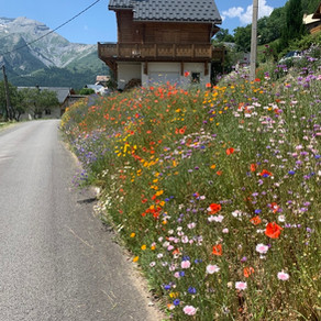 The Southern French Alps: Day One, Les Deux Alpes
