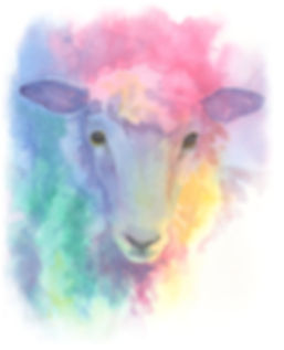 Watercolour Sheep Image