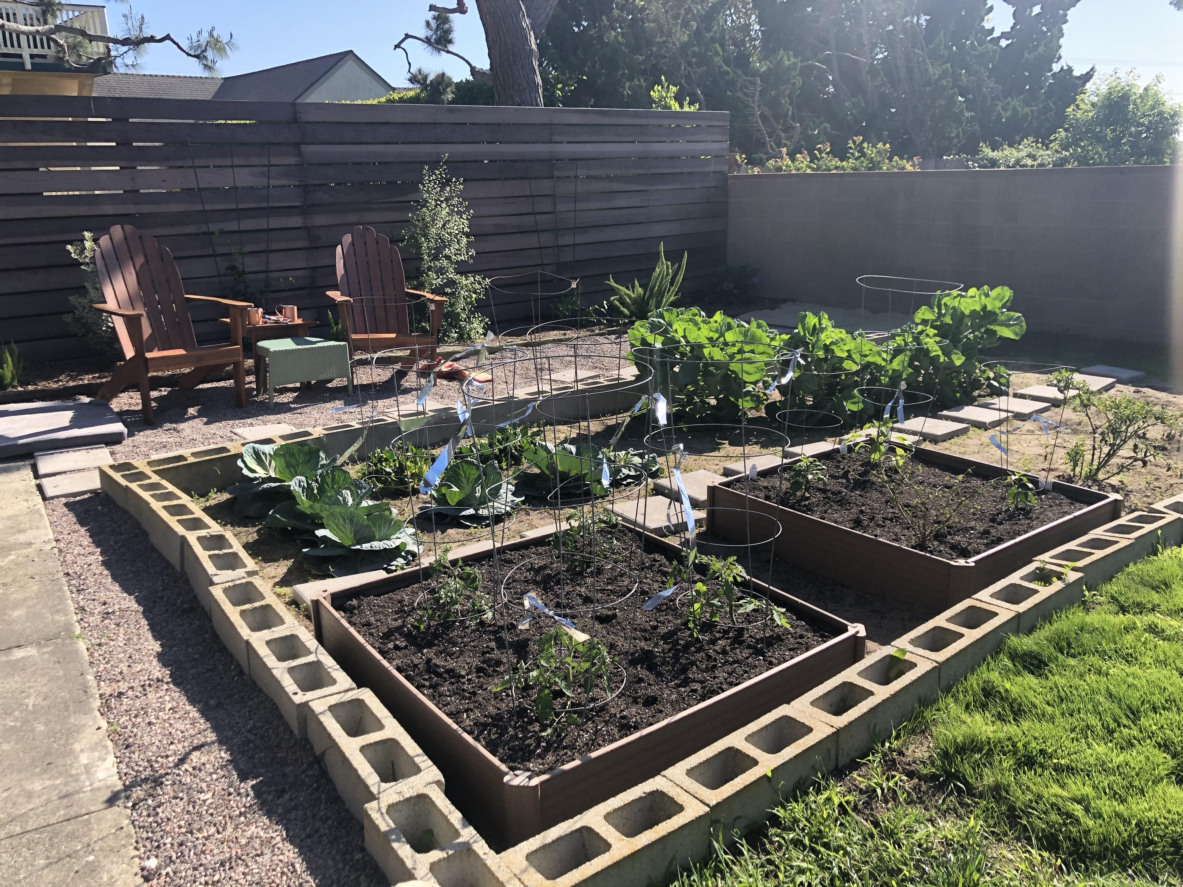 Winter to Summer Garden
