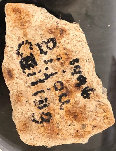 Bijou Ceiling Fragment