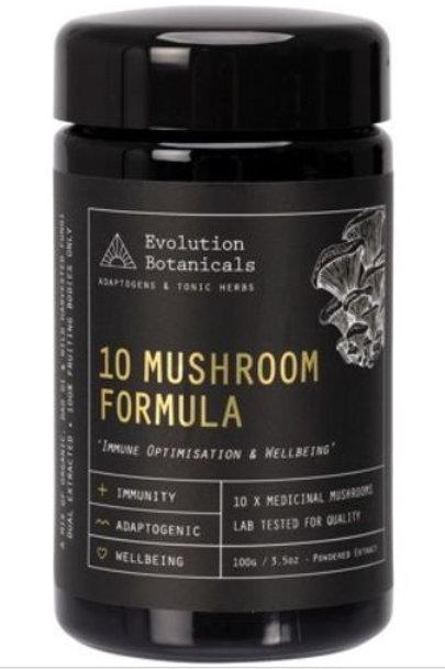 EVOLUTION BOTANICALS 10 Mushroom Formula