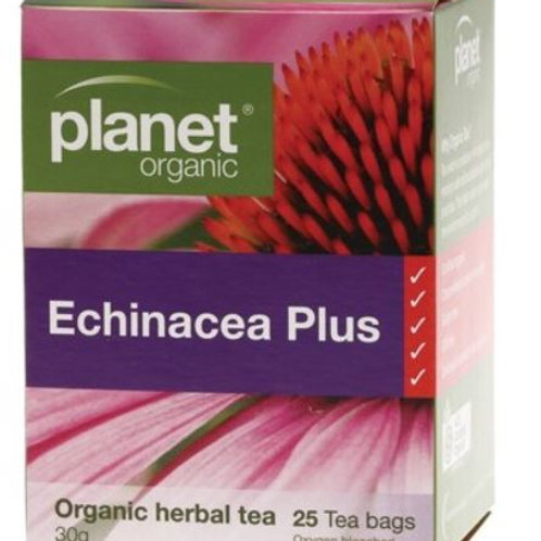 Herbal Tea Bags Echinacea Plus