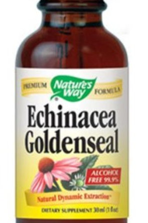 Echinacea Goldenseal by Nature's Way