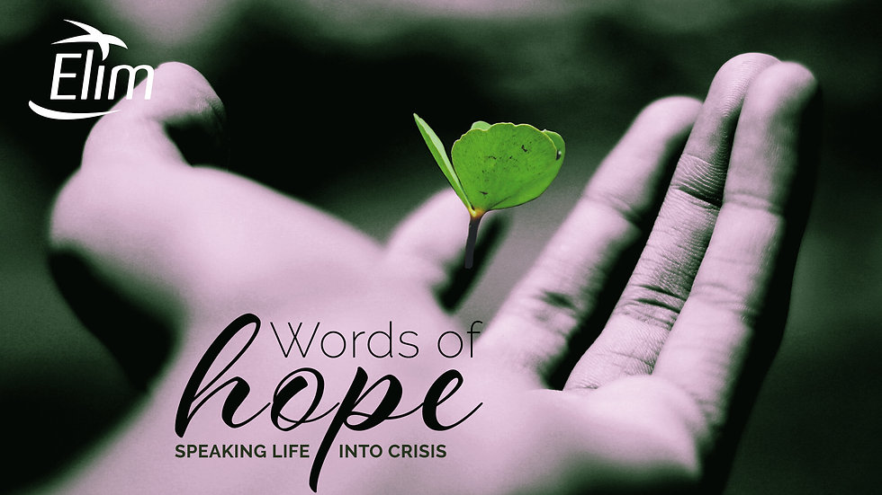 Words of Hope banner image
