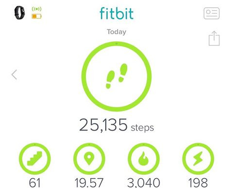 Steps Taken