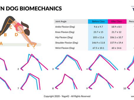 Downward Facing Dog Biomechanics