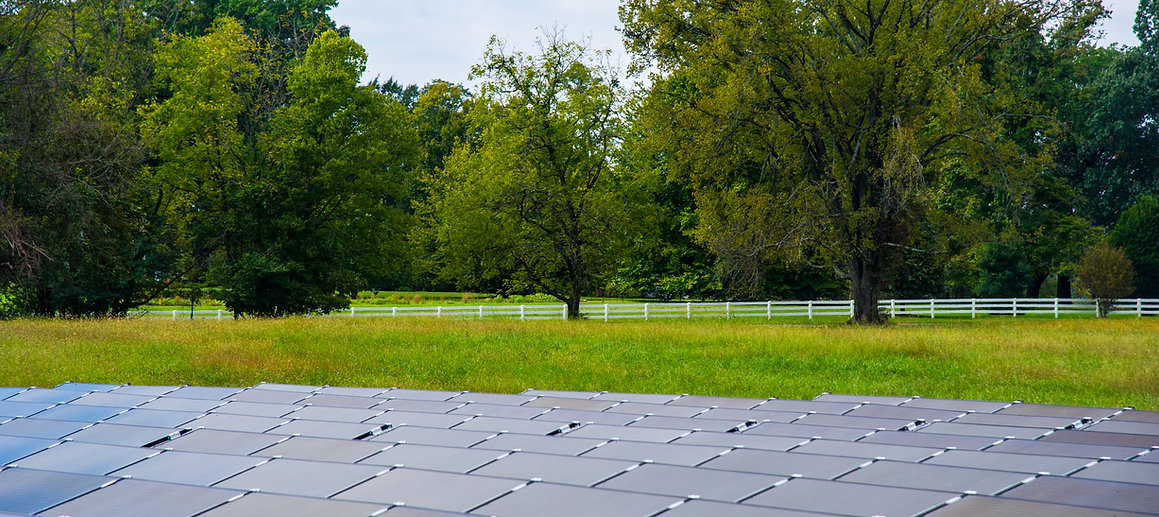 Photo of a large, local ground-mounted solar installatio with green field and trees behnd it.