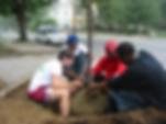 Teens Planting Street Tree.png