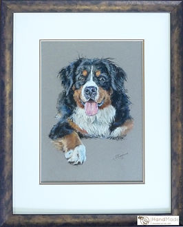 Pastel pet portrait with double mount, pastel spacer mount, gold and brown frame and UV protective conservation glass.