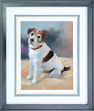 Modern silver grey picture frame, treble mount and a hidden pastel mount for a pastel pet portrait.