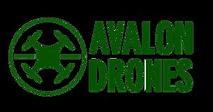 Logo Vert sans Fond- 20181210.png