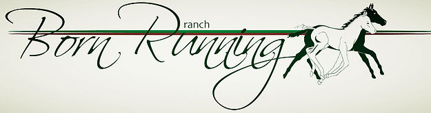 Born Running Ranch
