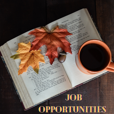 Job Opportunities: Issue 20