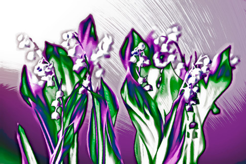 Lily of the Valley in Lavender Sketch