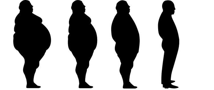 lose-weight-1911605_1280.png