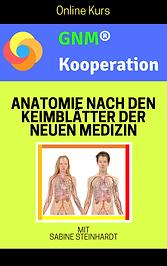 Bild-cover_keimblätter-kurs.png