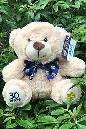 Beau Bear - 2.jpg