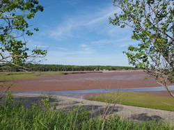 View of Bass River at low tide