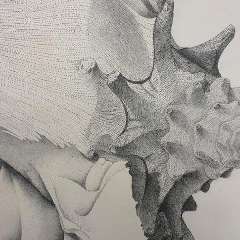 Insomniac Detail