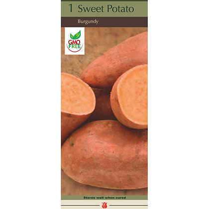 Sweet Potato Burgundy