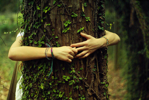 3 ways to feel the healing magic of trees