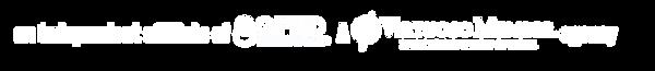 Virtuoso_GTN_Logo-whitebackground.png