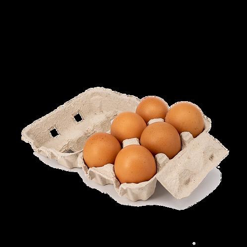 6 Bio-Eier