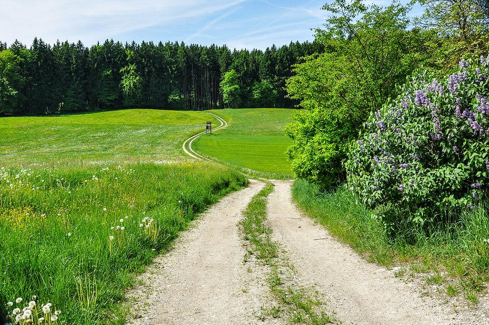 Landschaft-6.jpg