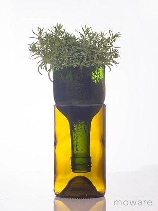 Upcycled Wine Bottle - Planter
