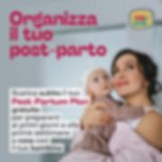Organizza il tuo post-parto .png