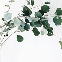 eucalyptus_lyocell_tencel_1-e15129243428