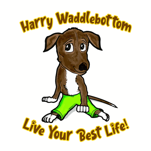 Harry Waddlebottom Vector (1).png