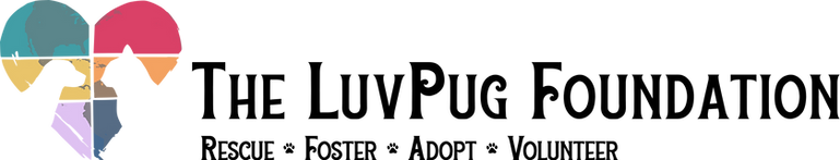 Logo_Color_Horizontal_DarkText.png