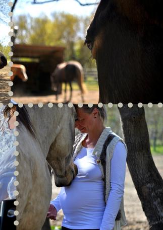montage photos com bébé chevaux.png