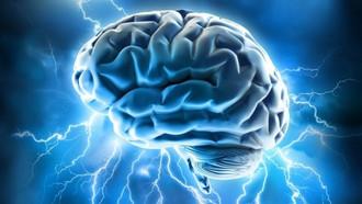 Stress cronico e ansia possono danneggiare il cervello e aumentare il rischio di gravi disturbi psic
