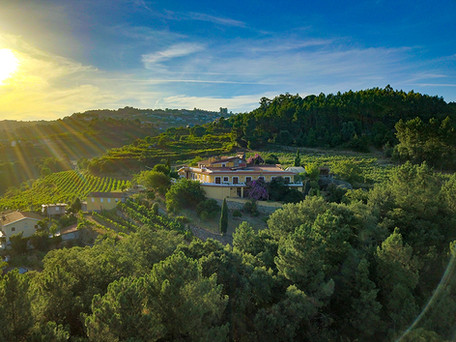 """""""The Pearl of Paiva"""" 5BR Deluxe Rural Hotel with 6.8 Hectares of Chardonnay/ Loureiro/Alvariño Wine"""