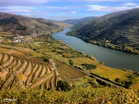 Douro Valley - UNESCO World Heritage Site...