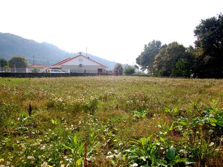 Terreno em Reboreda Vila Nova de Cerveira com 890 m2
