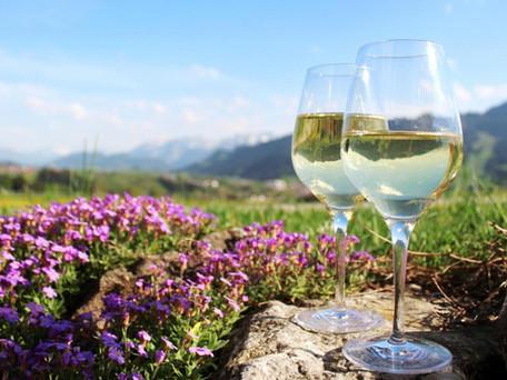 Beira Interior Wine... The Nectar from Serra da Estrela Mountain Region