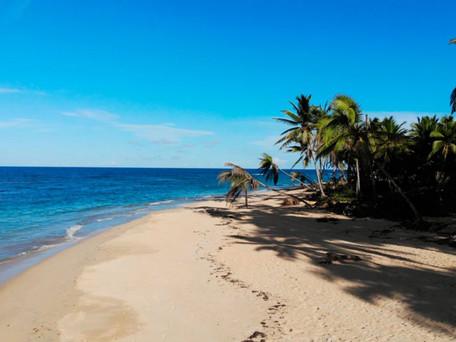 Beachfront Land for Sale - Uvero Alto - Punta Cana - Dominican Republic