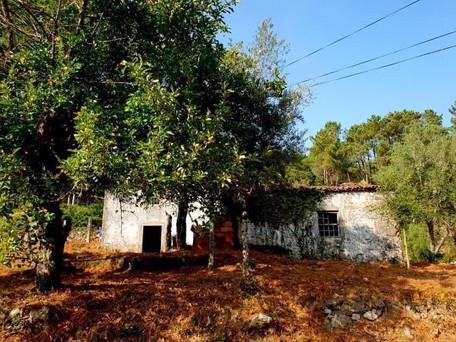 Rustic Stone Cottage for Renovation - Vila Nova de Cerveira