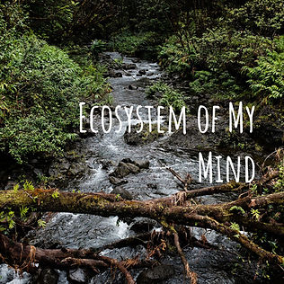 Ecosystem of My Mind (new cover).jpg