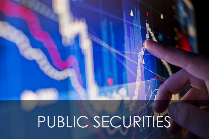 PUBLIC SECURITIES