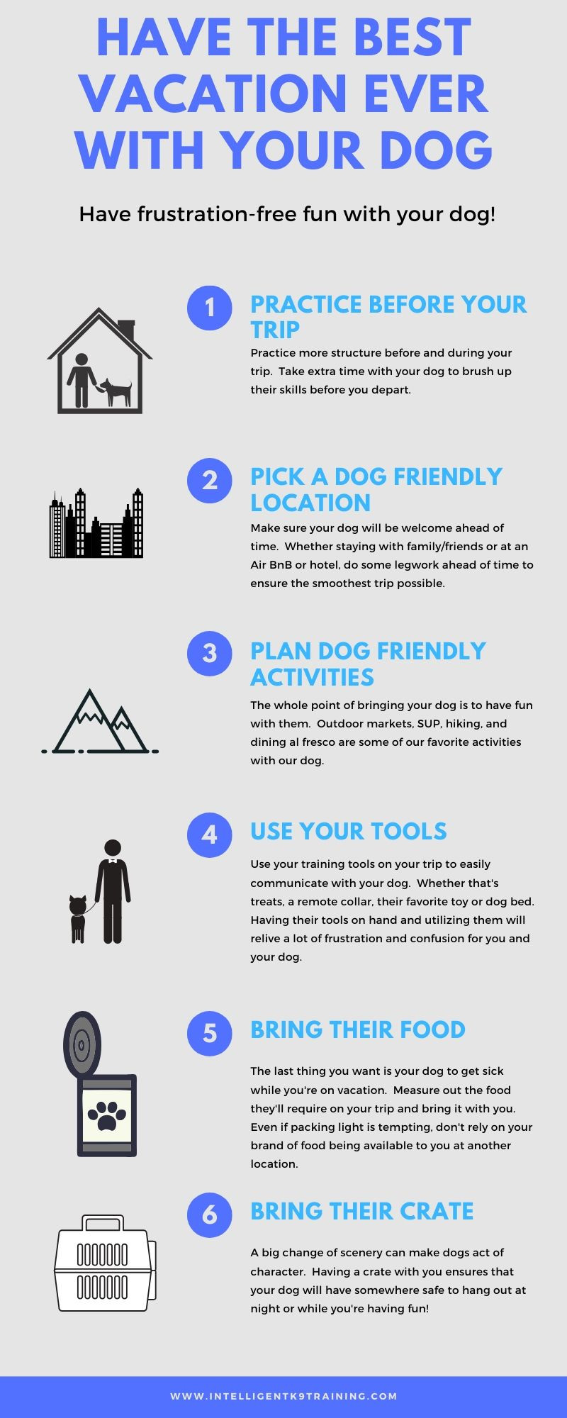 Infographic detailing how to have the best vacation with your dog