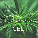 cbd-macro-cannabis-flower-marijuana-260n