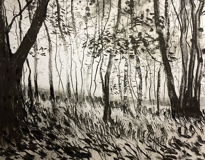 charcoal woods.jpg