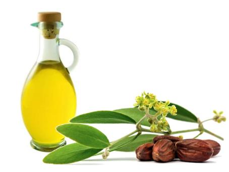 Capelli e olii idratanti o nutrienti ti spiego perché fare un'oleazione ai capelli