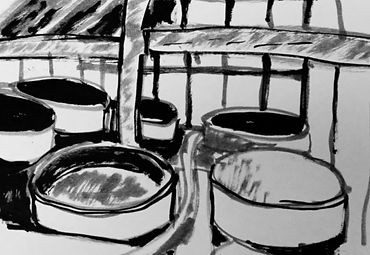 Fermentation du saké