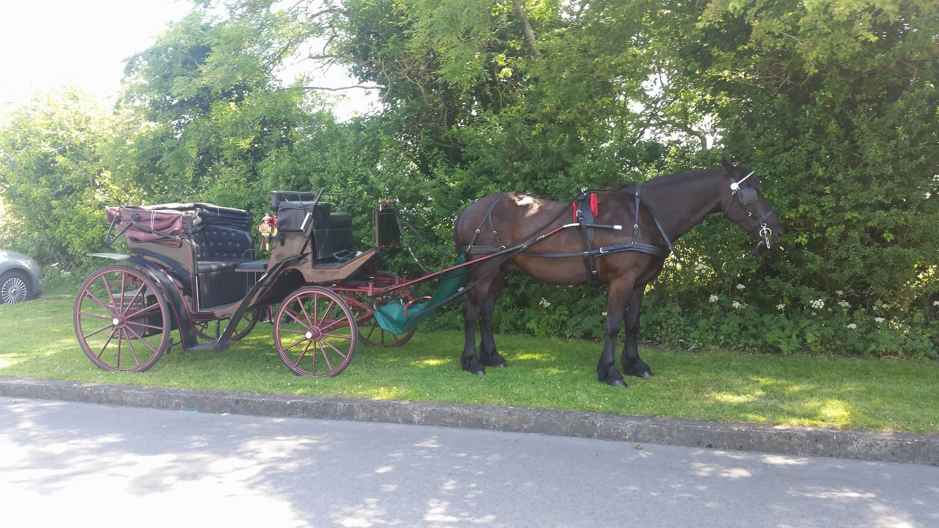 Balbriggan Carriages