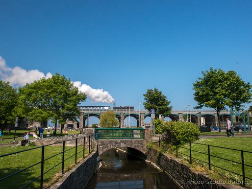 The Fingal Steam Train between Balbriggan and Drogheda with Balbriggan Summerfest